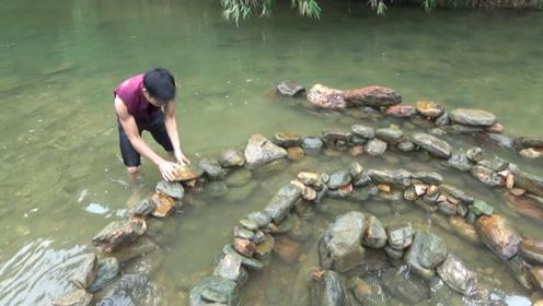 农村小哥在水中布下石阵,自动困住过路大鱼,收获太丰盛了!