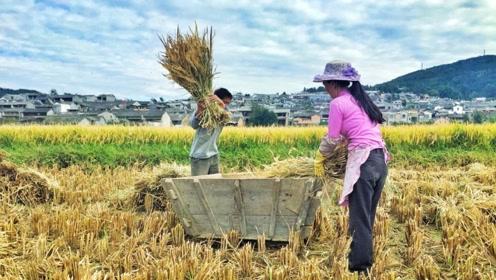 中国是世界上减贫人口最多的国家 这些变化你感受到了吗?