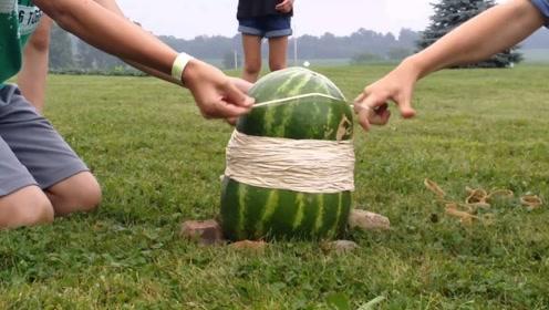 西瓜可以承受多少根橡皮筋?