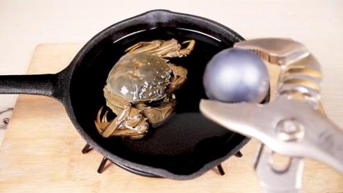 老外将铁球烧至1000度,放在螃蟹上,看完瞬间口水流下来!