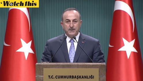 土耳其外长:土军暂停军事行动让恐怖分子撤退 这不是停火