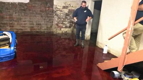 自家地下室突然涌出12cm深血水 调查发现与隔壁有关