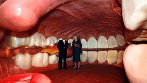 世界上第一个人体构造博物馆:内部是人的各种器官,你最想去哪里?