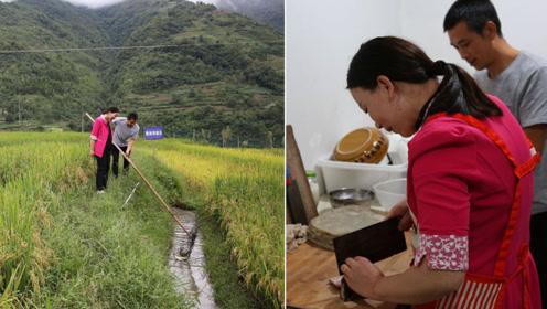 75后夫妻高山梯田种稻子养鱼,开农家乐收购苦荞,多种经营促增收