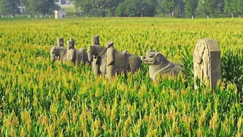 中国最悲催的皇陵,连盗墓贼都嫌弃进入,如今沦为庄稼地!