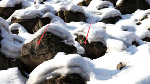 山西一土堆,向来不积雪,村民好奇挖开一看,被吓一跳!