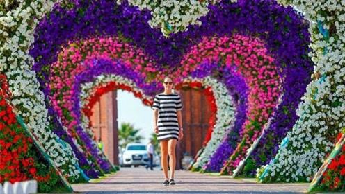 迪拜最豪花园,占地72000平方米,网友:像到了仙境一般