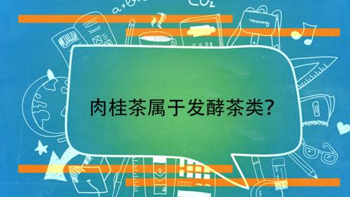 肉桂茶属于发酵茶类?