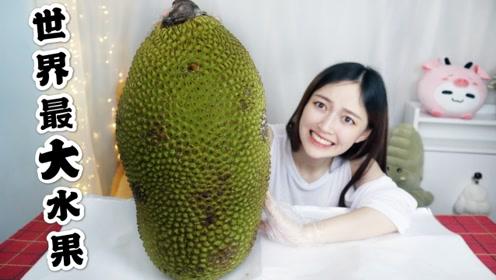 试吃世界上最大的水果,一颗就能长到上百斤,要多少人才能吃得完