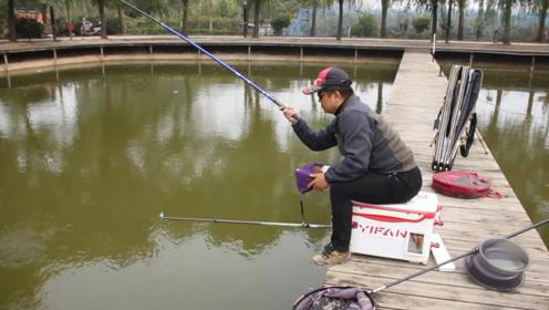 鱼窝里的鱼很多,但就是不咬钩是什么情况?钓鱼高手一语道破玄机