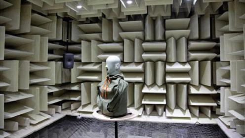 吉尼斯认证最安静的地方,声音负20分贝,常人最多待45分钟!