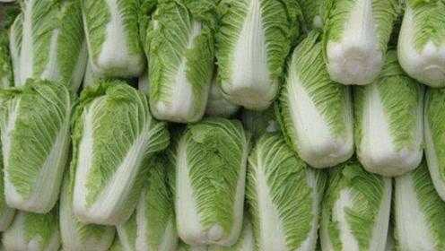 家里买白菜的注意了,我也是刚知道,告诉所有人,越快越好