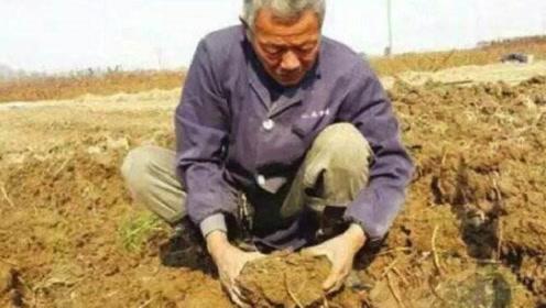 老农意外挖到一石头,每天不断分泌油脂,专家鉴定后明白了