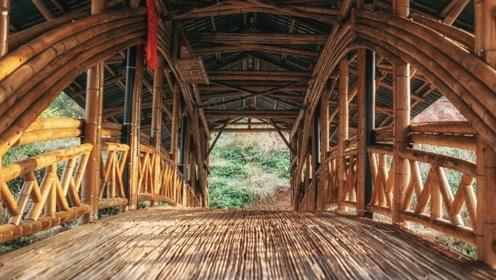 85后香港博士,在重庆农村修了一座桥:为平民做事,所学才有意义