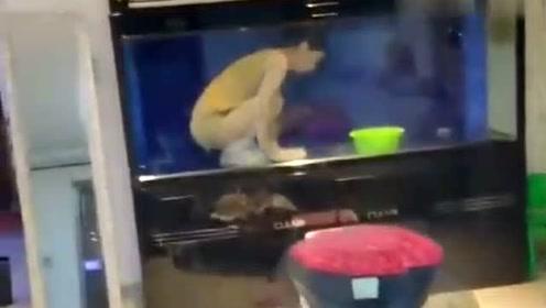 这条鱼不错,还知道自己打扫卫生