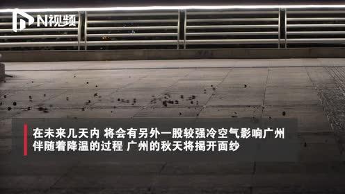 夜间起风的广州,揭开了秋天的面纱,像双11的口红只想拥有它