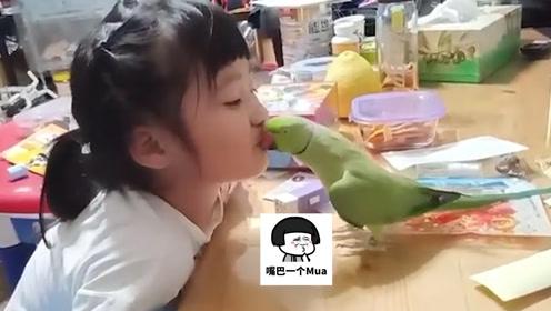 成精了!鹦鹉和小主人互动亲亲,嘴里还念念有词