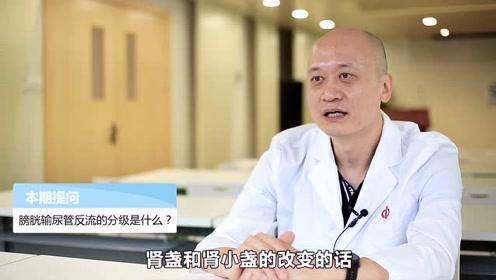 膀胱输尿管反流的分级是什么?