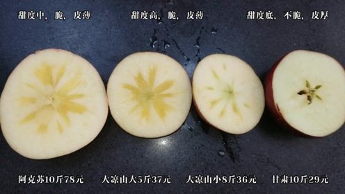 新疆阿克苏冰糖心苹果好吃还是大凉山丑苹果好吃?甘肃花牛太平淡