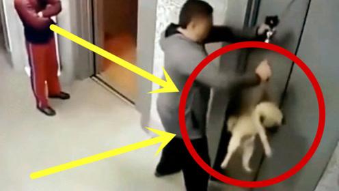 电梯门都关闭了,狗狗还在外面,接下来的一幕真是太悬了!