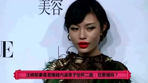 汪峰前妻葛荟婕疑内涵章子怡怀二胎:在繁殖吗?