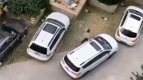 女司机经过6次仔细观察 已确定位置太小 停不进去