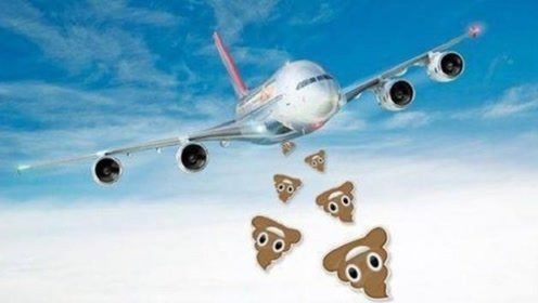 飞机上的粪便都排哪了,会砸到地上的人吗?空姐不小心说漏嘴