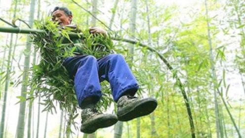 中国最后一位竹海飞人!70岁仍能飞跃竹海,独门绝技却面临失传