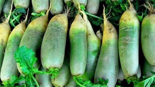 萝卜放太久容易变糠心?一个小方法,放上一年都新鲜,清脆又可口