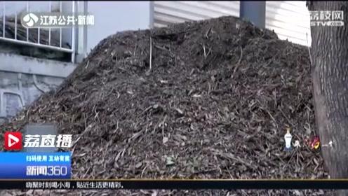 国内动物园首例!大象粪便变身环保有机肥