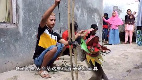 """印尼街头 神秘""""怪童"""",憨厚模样逗笑众,人揭开面纱却让人泪目!"""