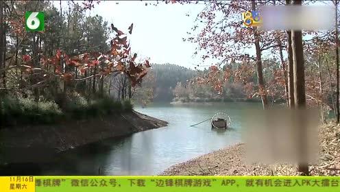 """长乐林场枫叶正红 游客说有""""小富士山"""""""