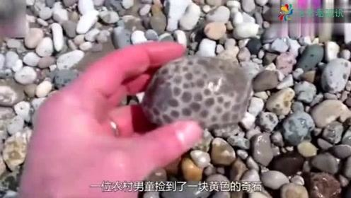 男子多年前在河边捡一块奇石,邻居发现提醒拿去鉴定,竟价值连城