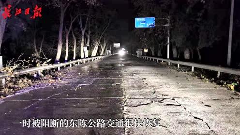大风吹倒大树阻断交通,城管队员连夜清运