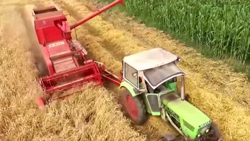 新型小麦收割机,不仅收割能力强,秸秆处理也很好,你看怎样