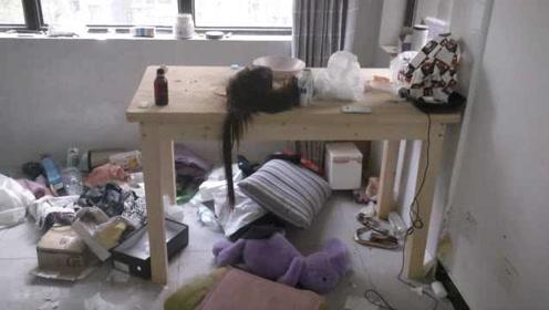 27岁女租客失联家用电器失窃, 房东开门傻了眼