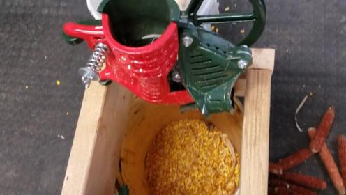 9岁小女孩发明小型剥玉米机,一小时能剥70斤玉米,20块钱造一台