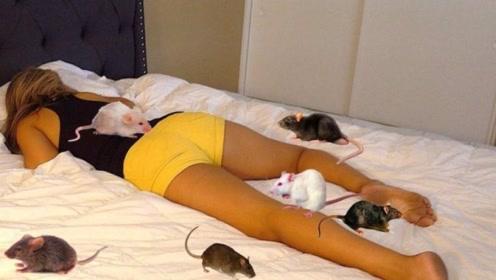 小伙将老鼠放在女友床上,下一秒憋住别笑,镜头记录全过程