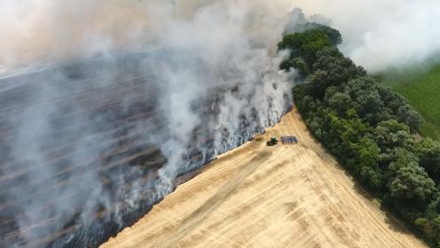 美国上万亩农田即将被烧毁,农场主灵机一动,及时挽回了损失