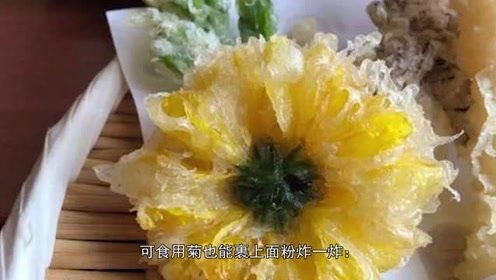 吃苍蝇的猪笼草竟被日本人炸着吃了,果然万物皆可天妇罗
