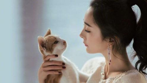 如果你的猫咪有以下这些行为,那么恭喜你!不是你养猫,而是猫在养你