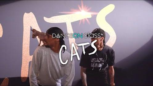 当地表最强Hiphop双胞胎Les Twins碰上电影《猫》