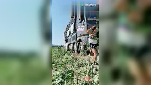 最近这货车女司机火了!竟然用头开西瓜!西瓜硬还是头硬啊?!