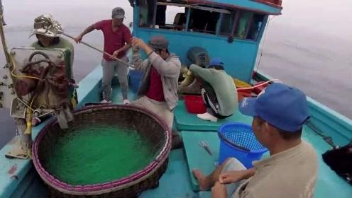 一群人,就围着一跟绳子转,这渔获真惨啊
