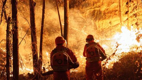 广东佛山山火仍在持续:村民自发为消防送糖水,武警战士躺地短歇