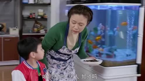 二胎:林母要将大壮送人!这引起了豆豆和乔菲不满