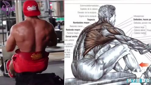 12个必做训练轰爆背部肌肉