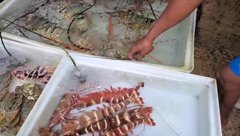 泰国海鲜鱼市,龙虾斑节虾都很粗!
