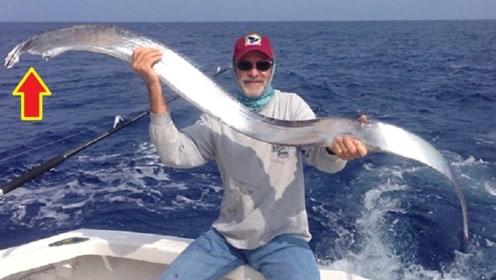 """这种最狠心的鱼,一旦被捕后就""""自爆"""",没人能将它活着带回家!"""