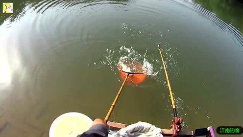 这样的河边钓鱼风景更是迷人,大肥鲫鱼钓上就有半斤大一条